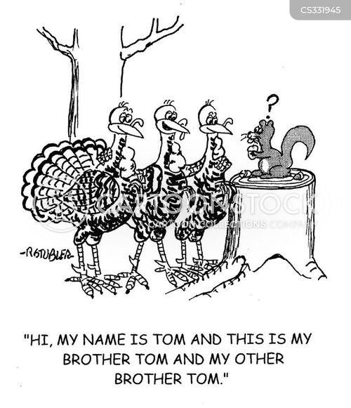 tom turkey cartoon