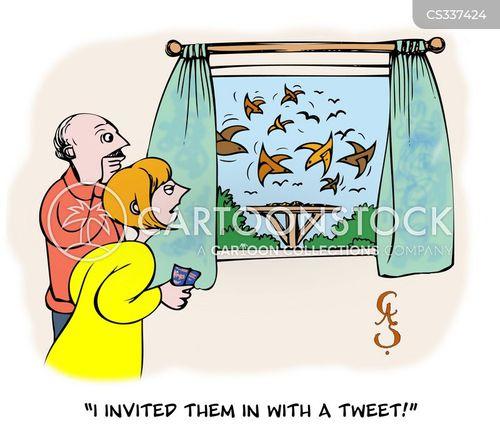 birdbath cartoon