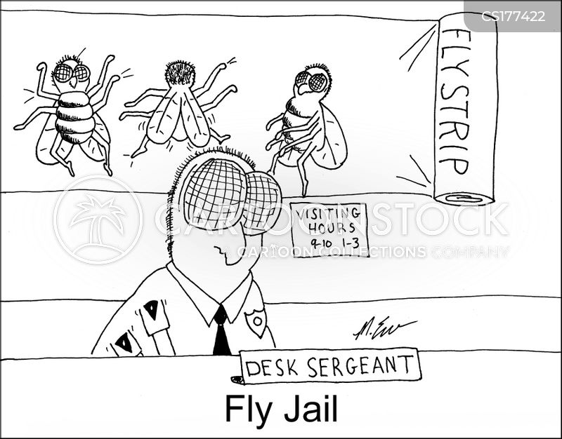 fly paper cartoon