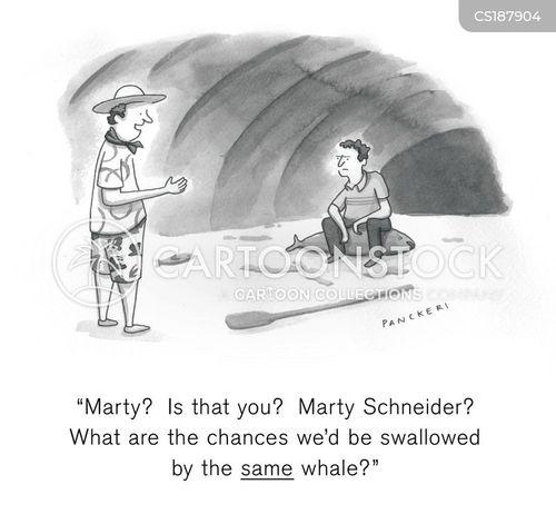 coincidences cartoon