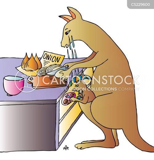kanagroo cartoon