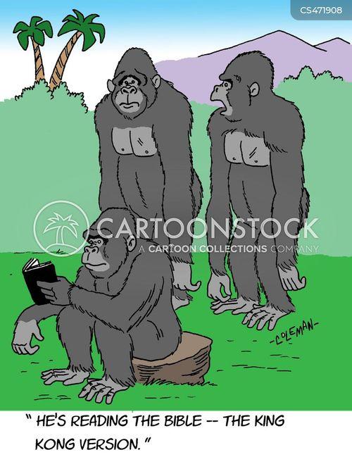 bible scholar cartoon