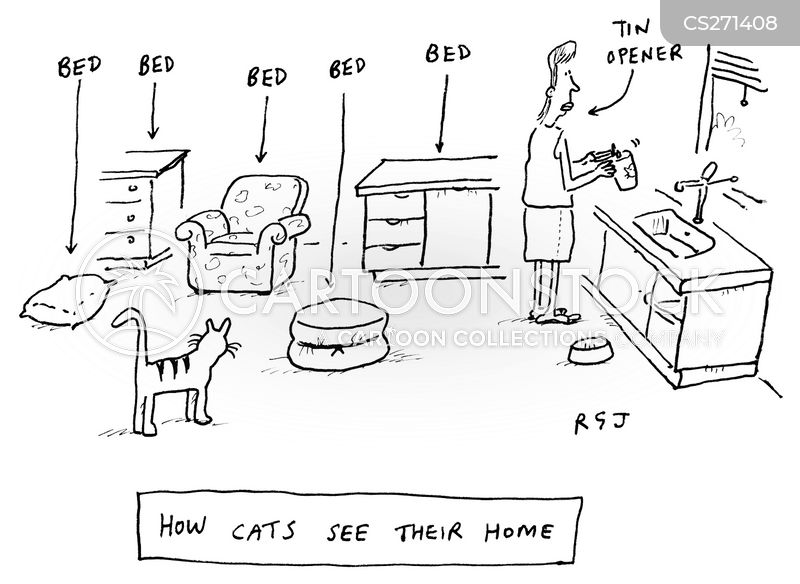 Family Cats cartoons, Family Cats cartoon, funny, Family Cats picture, Family Cats pictures, Family Cats image, Family Cats images, Family Cats illustration, Family Cats illustrations