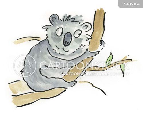 australian wildlife cartoon