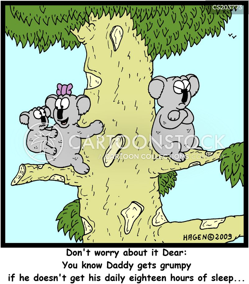 Koalas cartoons, Koalas cartoon, funny, Koalas picture, Koalas pictures, Koalas image, Koalas images, Koalas illustration, Koalas illustrations