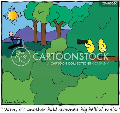 birders cartoon