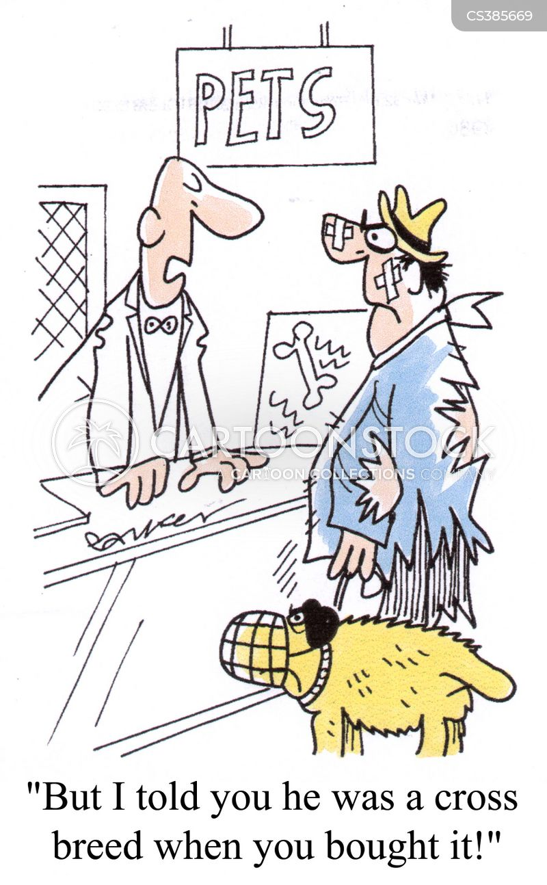 cross-breeds cartoon