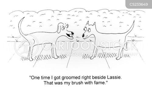 dog grooming cartoon