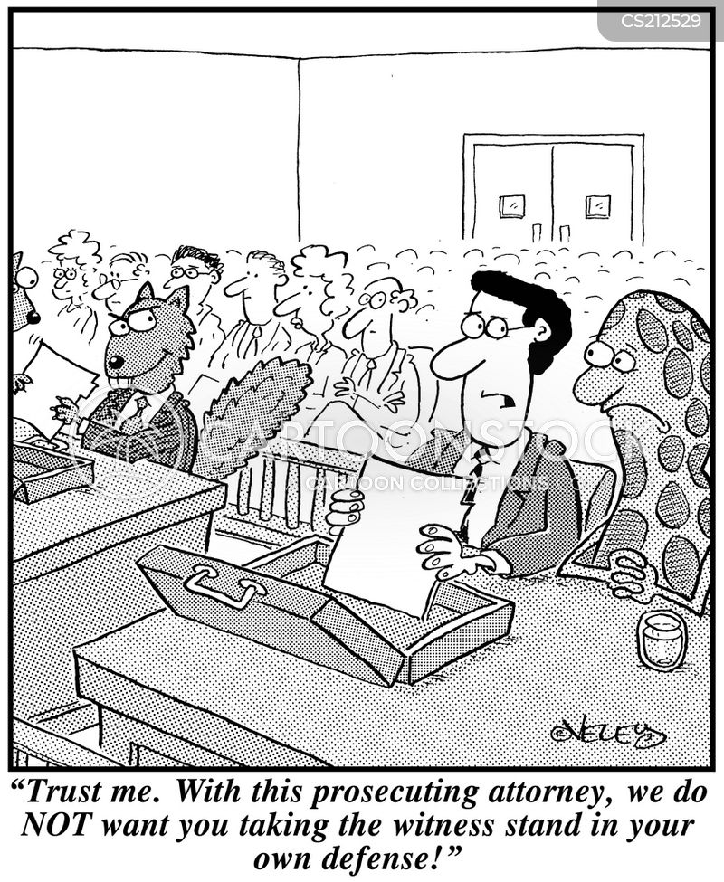 how to become an animal lawyer