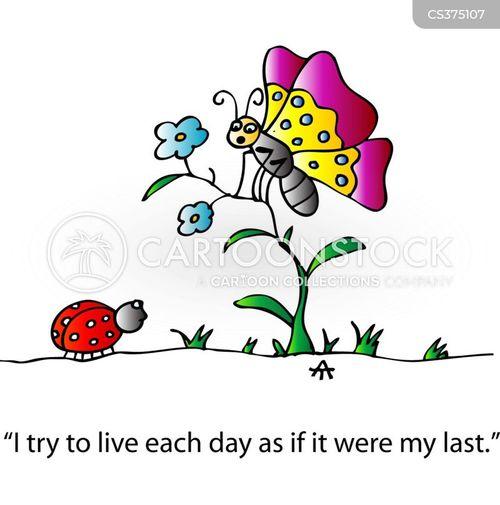 life-span cartoon