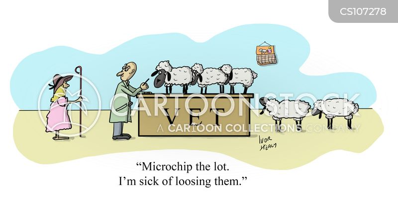 Lost Sheep cartoons, Lost Sheep cartoon, funny, Lost Sheep picture, Lost Sheep pictures, Lost Sheep image, Lost Sheep images, Lost Sheep illustration, Lost Sheep illustrations
