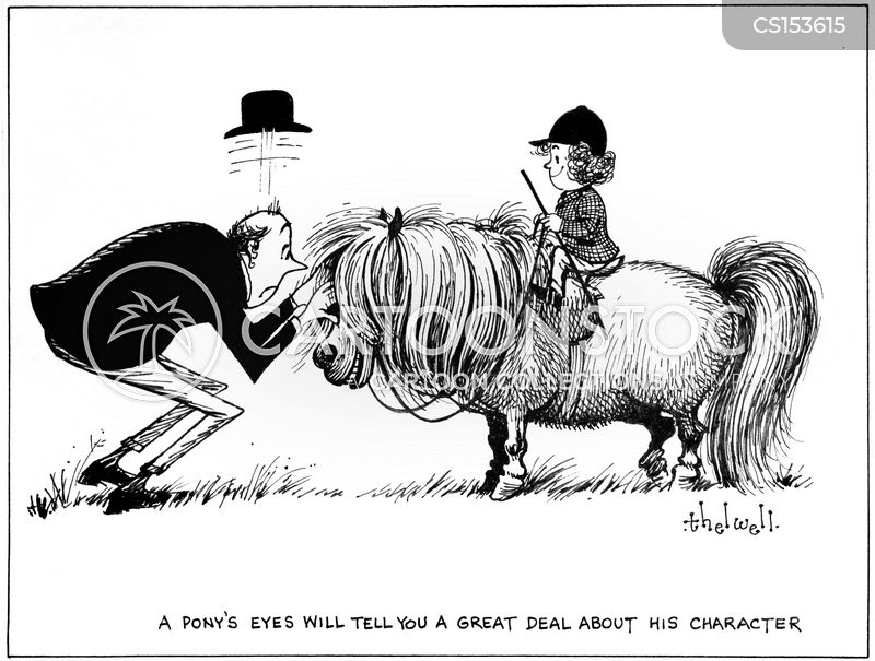 horse sale cartoon