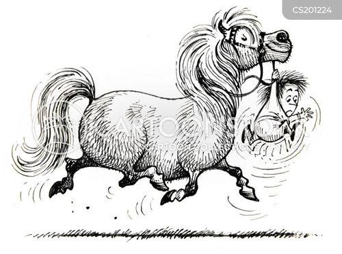 riding lessons cartoon