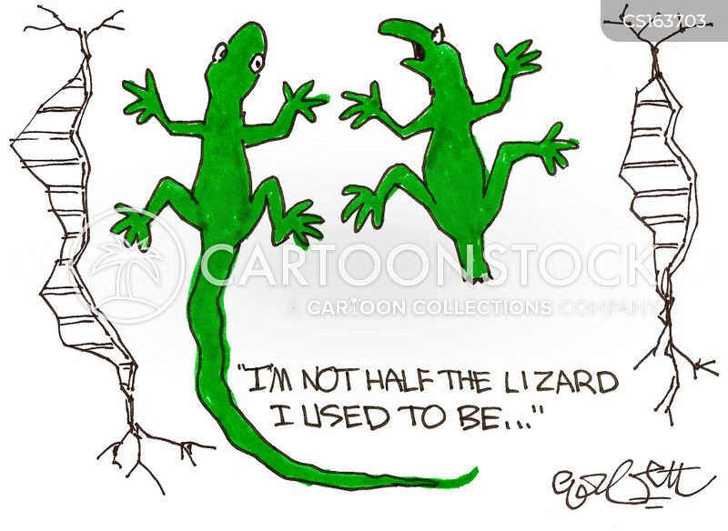 Lizard cartoons, Lizard cartoon, funny, Lizard picture, Lizard pictures, Lizard image, Lizard images, Lizard illustration, Lizard illustrations