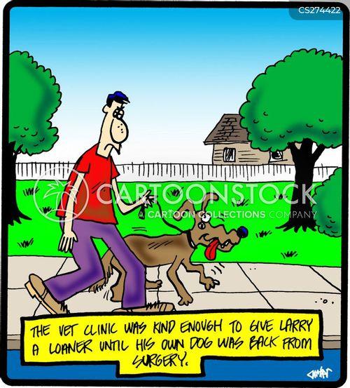 loan car cartoon