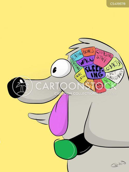 neurological surgery cartoon