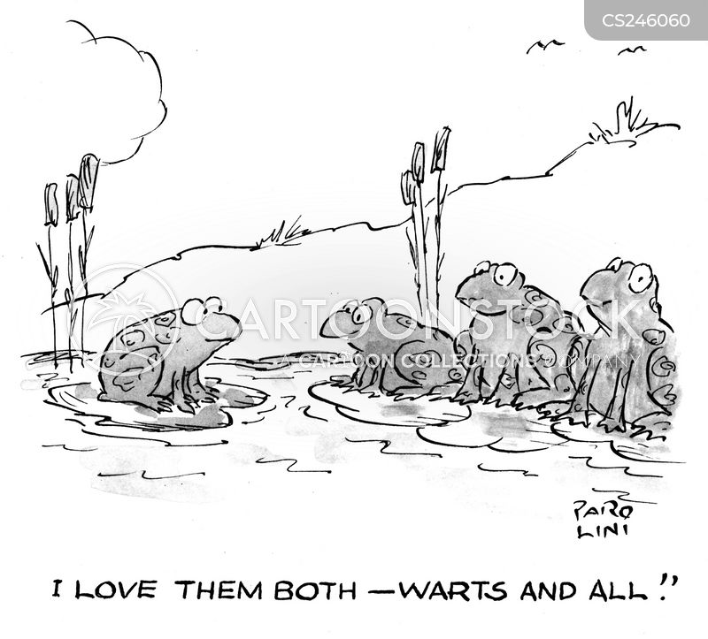 warts and all cartoon