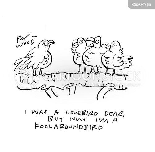 love birds cartoon