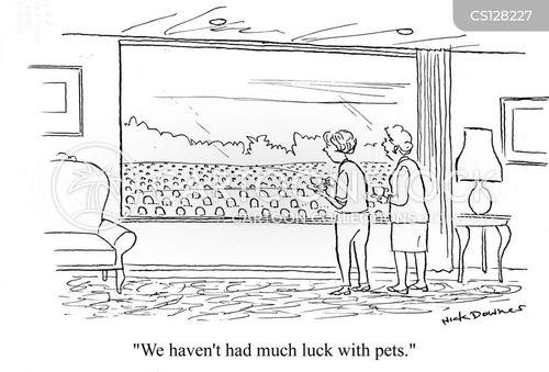 gave cartoon
