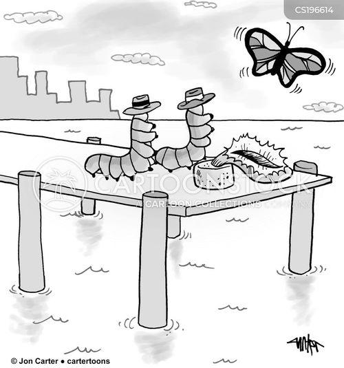 life cycle cartoon