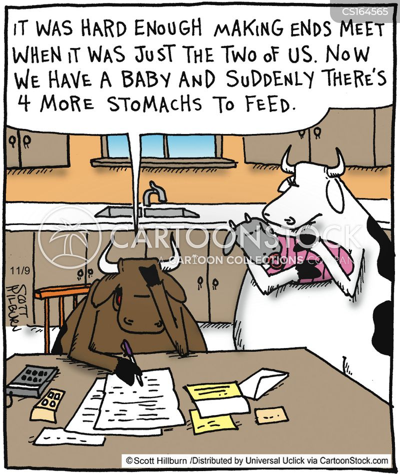 cow stomachs cartoon