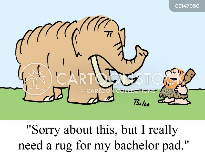 bachelor pads cartoon