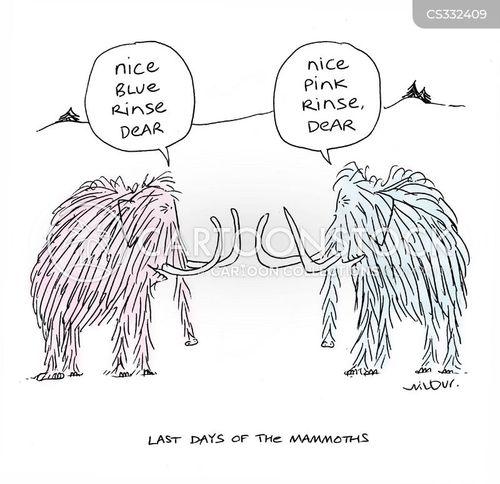 last days cartoon
