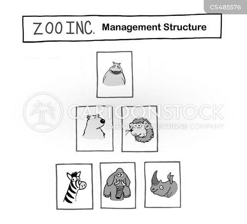 management structures cartoon