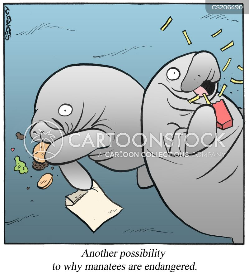Manatee Cartoons and Comics - funny pictures from CartoonStock