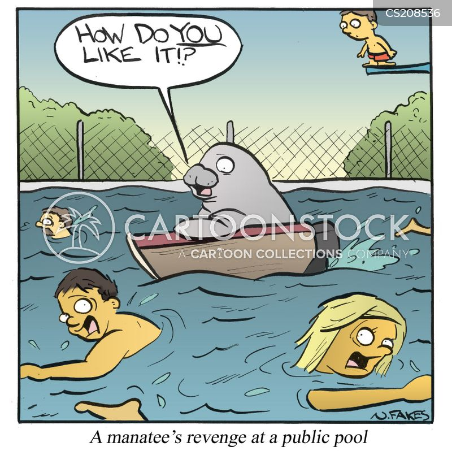 public pools cartoon