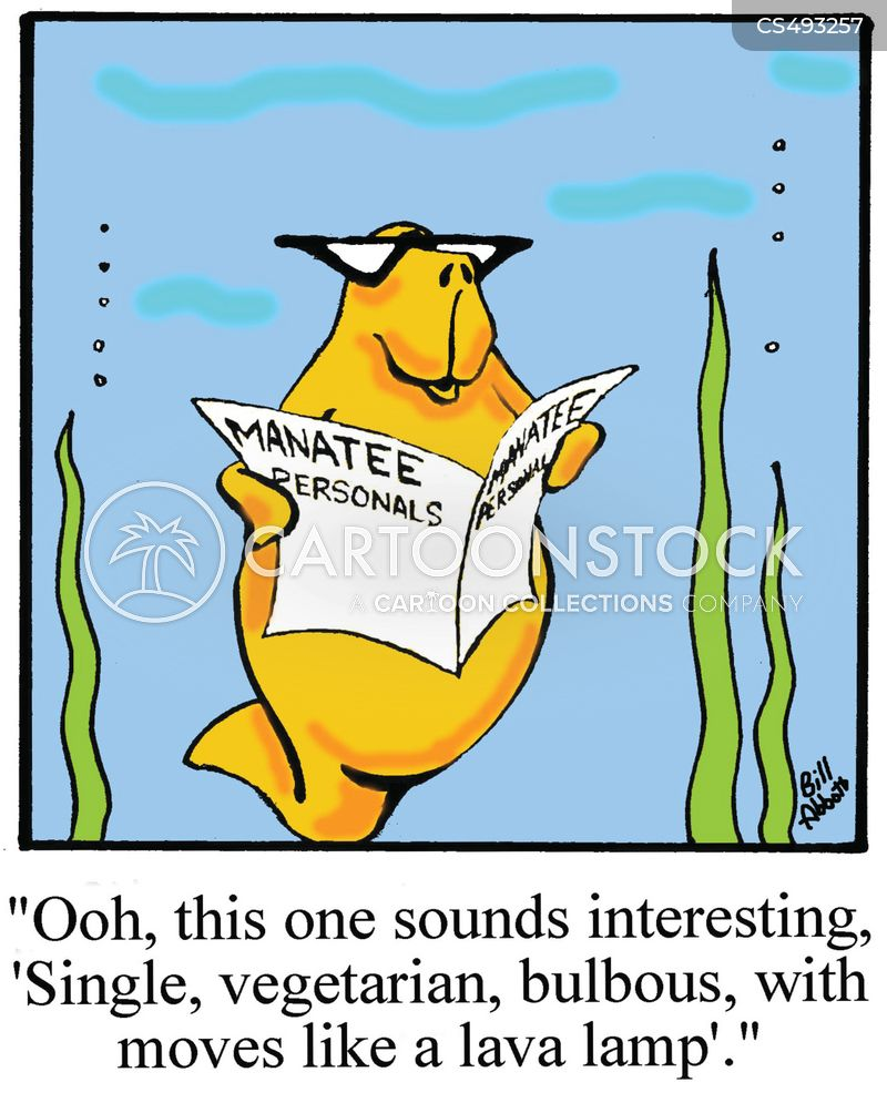 marine mammal cartoon