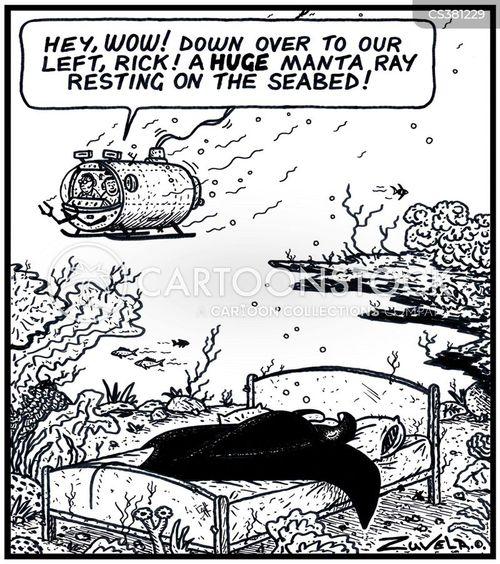 ocean floor cartoon