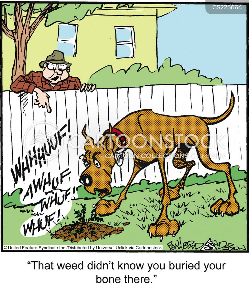 garden pest cartoon