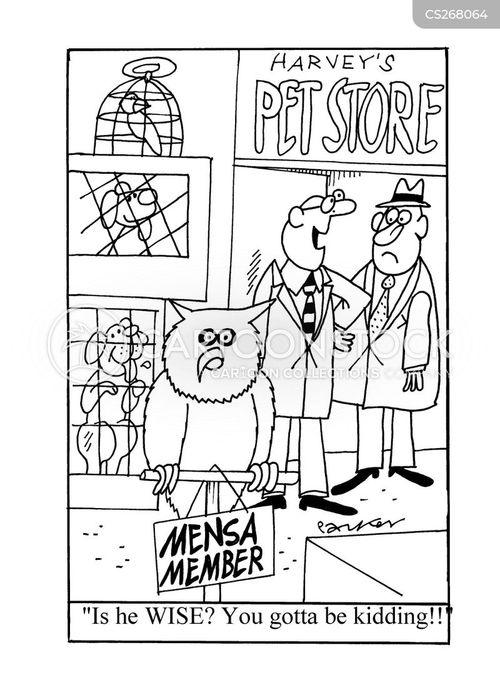 wise owls cartoon