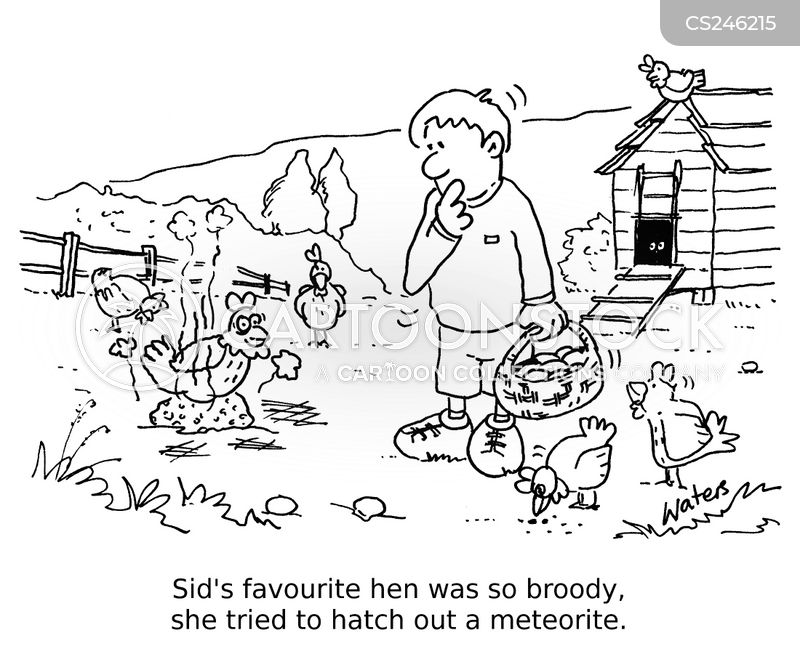 broody cartoon