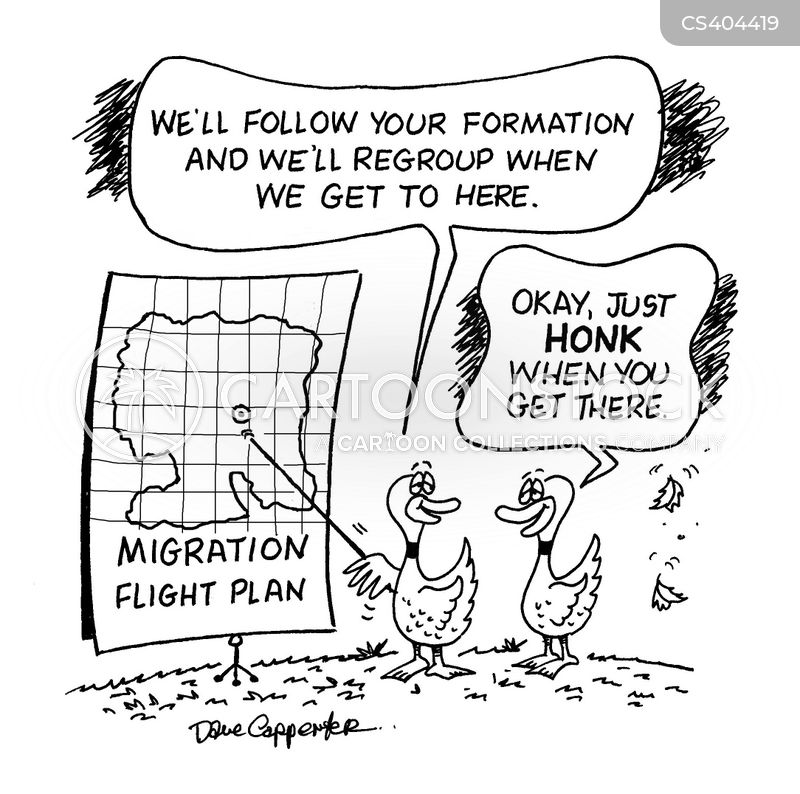 flight path cartoon