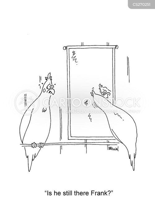 cockatiel cartoon
