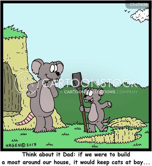 building a moat cartoon
