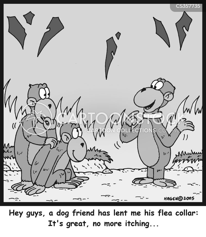 fleas collar cartoon