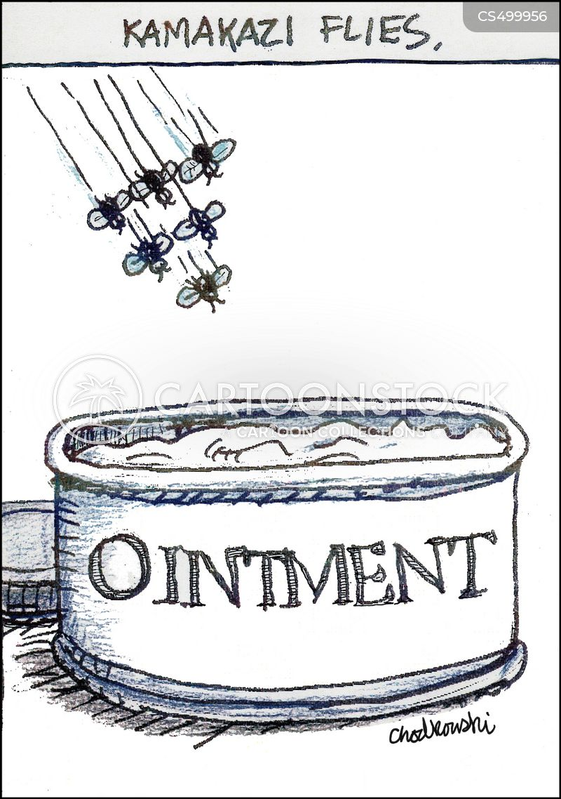 fly in the ointment cartoon