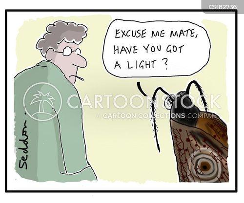 moths cartoon