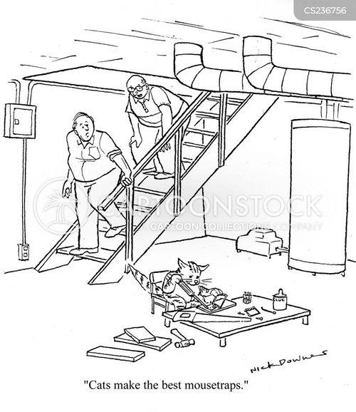 kitten owner cartoon