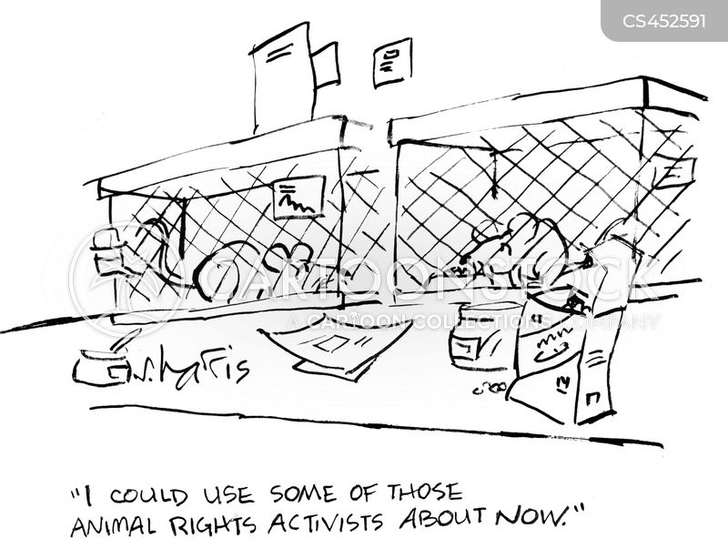 animal research cartoon