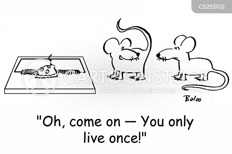 you only live once cartoon