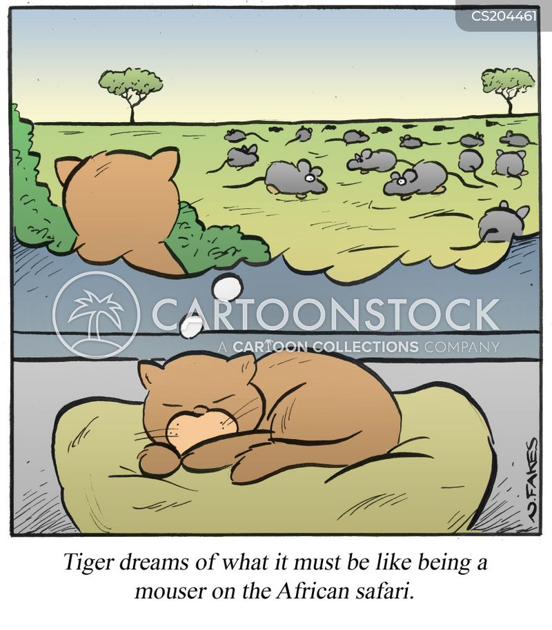 wild cats cartoon