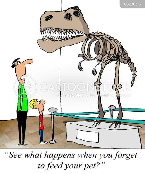 Image result for museum dinosaur bones joke