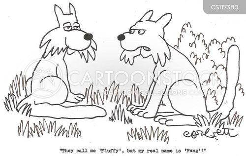 fluffy cartoon
