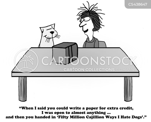 find my essay zebra
