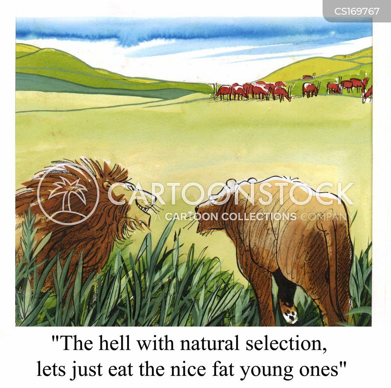 natural selection cartoon