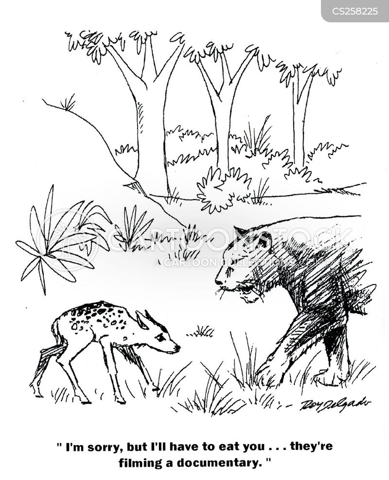 nature programs cartoon